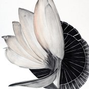Untitled, 42x29.7cm, chinese ink on paper, 2014